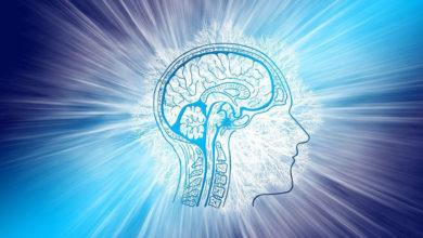 Photo of Как точно определить IQ