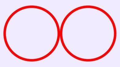 Photo of Два Круга. Проективный тест